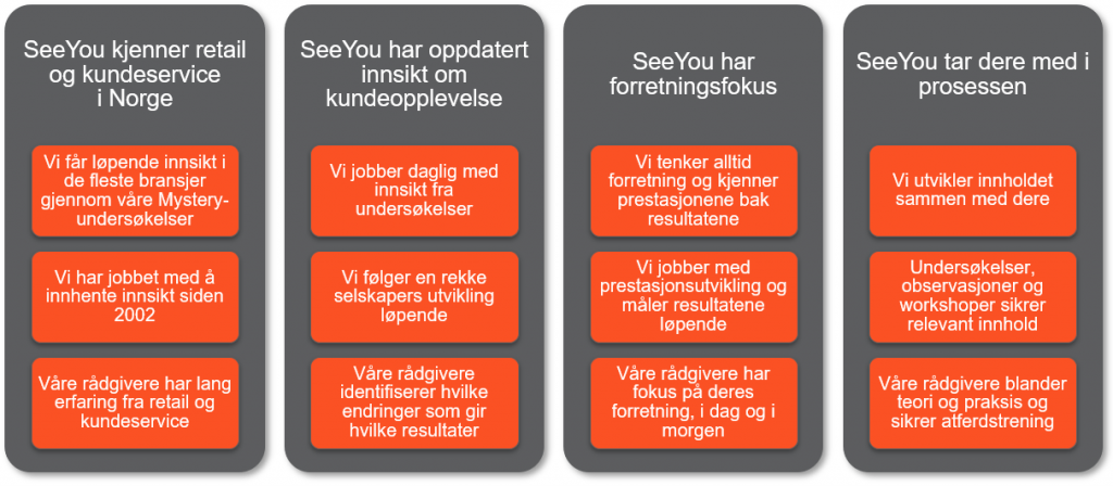 Hvorfor SeeYou Consulting